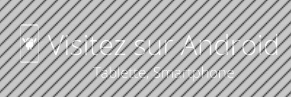 visite immersive en sur système android